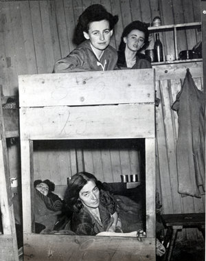 Bergen Belsen Displaced Persons Camp